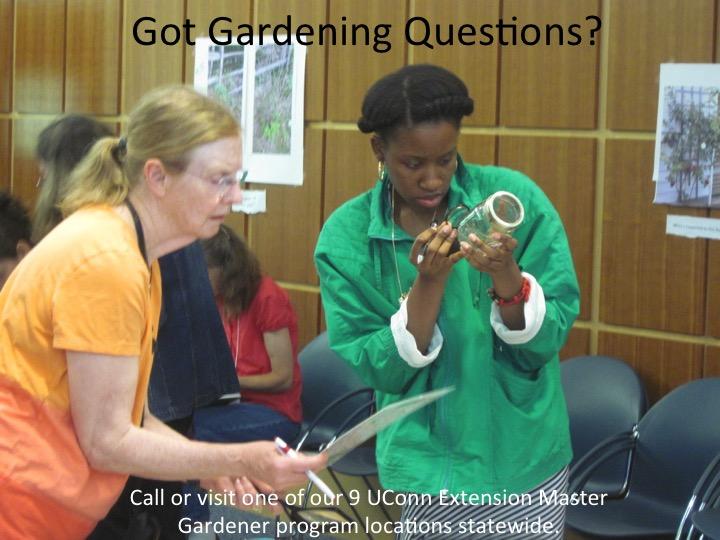 garden questions image